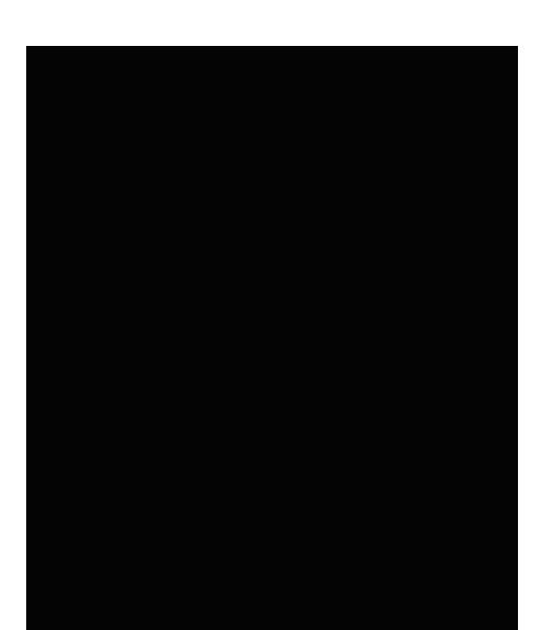 Avatar Rob Wijnberg