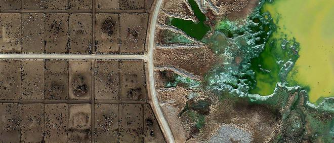Een weidegrond op Texas. Deze foto is onderdeel van de serie 'Feedlots' over landschappen die volledig zijn ingericht om te voorzien in vlees en olie. Foto: Mishka Henner