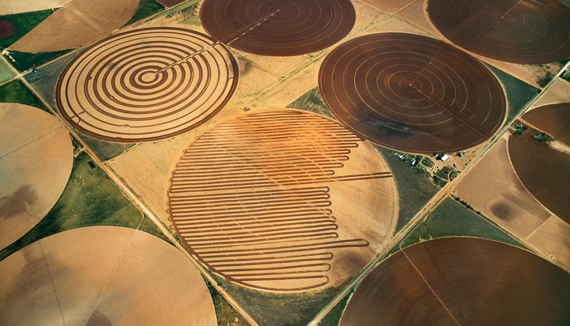 Landbouw in Texas (Verenigde Staten). Foto: Jim Wark / Hollandse Hoogte