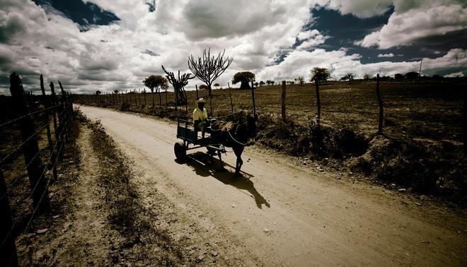 Een boer trekt door de sertão. Foto: Hollandse Hoogte