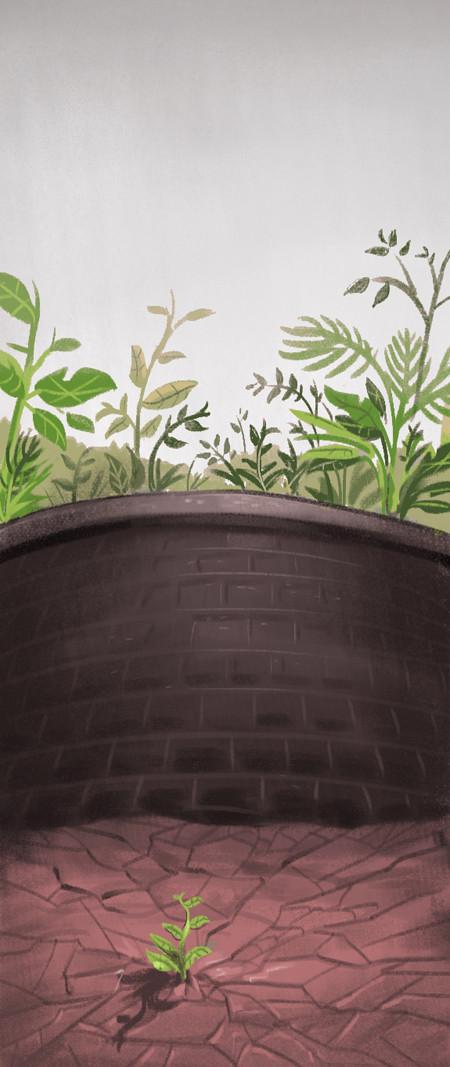 Illustration by Aimée de Jongh