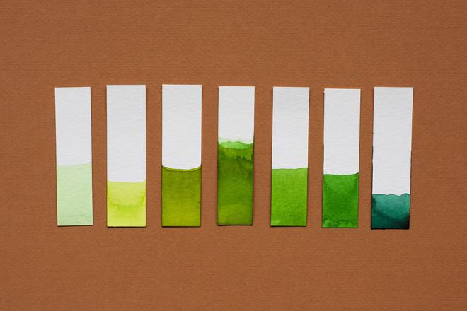 Een kleurstudie naar de kleur groen bij giftige en zuiverende planten. Foto: Amber Toorop (voor De Correspondent)