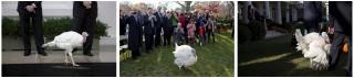 3 jaar Thanksgiving in het Witte Huis. Foto's: Pete Souza/the White House
