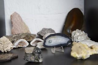 De stenenverzameling van Martijn Kroezen. Foto: Thomas Donker (voor De Correspondent)