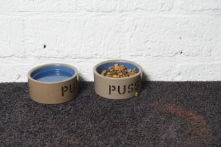 Eten en drinken voor de kat van Martijn. Foto: Thomas Donker (voor De Correspondent)