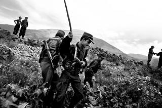 In de Badakhshan-provincie verwoest de Afghaanse politie papavervelden in de hoop zo de productie van heroïne lam te leggen. Foto: Paolo Pellegrin/Magnum Photos/HH