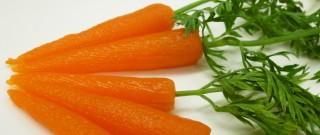 Wortelpuree, uitgeprint in de vorm van wortels. De smaak? Die blijft gewoon hetzelfde. Foto: TNO