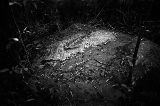 Het graf van Atatur nabij het dorpje Babulia (Bangladesh). Twee dagen eerder werd hij 's nachts geliquideerd, toen hij samen met zeventig anderen een kudde runderen naar Bangladesh wilde smokkelen. Foto: Gaël Turine/HH