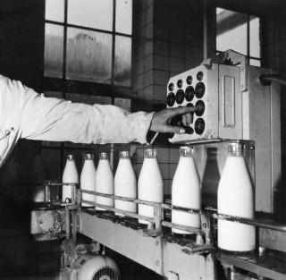 Een melkfabriek (locatie en jaartal onbekend). Foto: Hollandse Hoogte