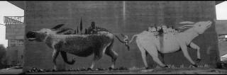 Muurschildering in Bethlehem. Foto: Josef Koudelka, Magnum Photos, Hollandse Hoogte