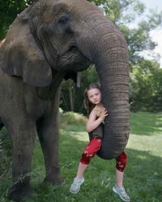 De foto getiteld 'Shiba Up' (2006) uit het fotoboek van Robin Schwartz 'Amelia and the Animals' (Aperture, 2014). Foto: Robin Schwartz