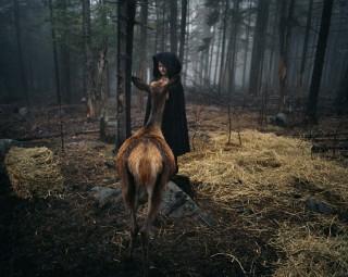 De foto getiteld 'Deer Butt' (2007) uit het fotoboek van Robin Schwartz 'Amelia and the Animals' (Aperture, 2014). Foto: Robin Schwartz