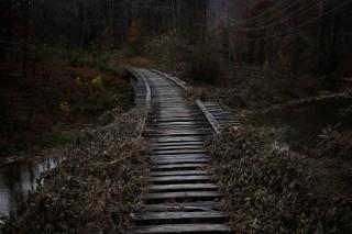 In de steenkoolstad Cumberland in Kentucky (Verenigde Staten). Foto: Luke Sharett/Getty Images