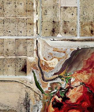 Een weidegrond in Texas, uit de serie 'Feedlots' van fotograaf Mishka Henner.