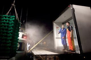 De gevangen vis wordt in de vrachtwagen geladen om naar de afslag te worden vervoerd. Foto: Jan de Groen/Hollandse Hoogte.
