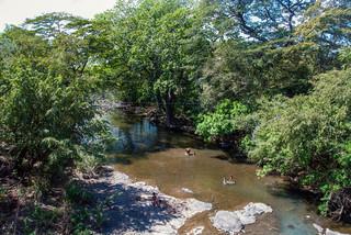 Kinderen en volwassenen spelen in de El Tule-rivier, die in de plannen is aangemerkt als een van de nieuwe aanvaarroutes naar het toekomstige Nicaraguakanaal. Foto: Teake Zuidema
