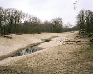Het Nationaal Park Zuid-Kennemerland, een Natura 2000-natuurgebied in Noord-Holland met stuifduinen en waterwingebied. Foto: Sterre Sprengers