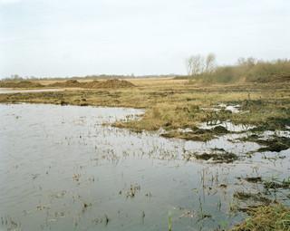 Het Nationaal Park de Wieden-Weerribben, een Natura 2000-natuurgebied in Overijssel met moerassen en meren. Foto: Sterre Sprengers