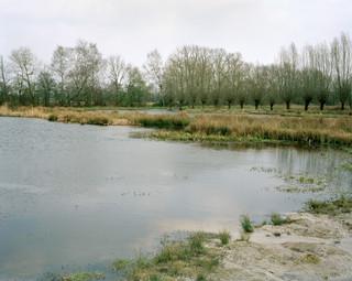 Het Beekbergerwoud in Gelderland. Sinds 2006 wordt gewerkt aan herstel van dit gebied om het weer de uitstraling te geven die het ooit had als enige oerbos van Nederland. Foto: Sterre Sprengers