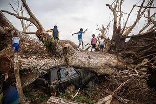Kinderen spelen op een boom die zo'n twee weken daarvoor door de cycloon Pam omver is geblazen. Foto: Vlad Sokhin / Hollandse Hoogte