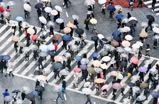 Als je de computer wilt leren om een paraplu te herkennen, hoef je bij machine learning niet al zijn eigenschappen te beschrijven, je laat hem gewoon honderd miljoen foto's zien. Tom Bonaventure / Getty Images