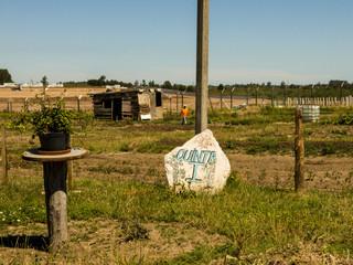 Moestuinen van gevangenen. Foto: Ynske Boersma