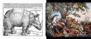 Links: de Rhinoceros-gravure van Albrecht Dürer. Rechts: 'Les Nouvelle Indes' van Alexandre Franc?ois Desportes.