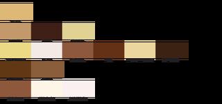 Een huidskleurcategorisatie uit 1976 van het Braziliaanse Instituut van Geografie en Statistiek onderscheidde 134 typeringen en dagelijkse uitdrukkingen die de Brazillanen zichzelf toekende. De volgende illustraties zijn een creatieve interpretatie.