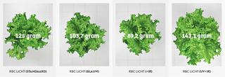 Een ander onderdeel van het onderzoek heet Full spectrum Analysis, LED RBC Spectrum. Beelden: PARUS