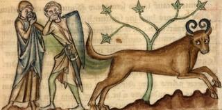 Het runderachtige fabeldier 'de bonnacon' was berucht om zijn scheten. Het ontvluchtte jagers door al schetende bomen en struiken in de hens te zetten.