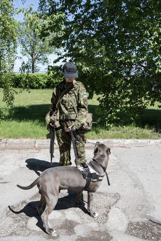 Een vrijwilliger van de Estse Defensieliga. Foto: Tomaso Clavarino