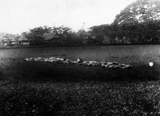 Op een veld in Barru worden op een ochtend eind januari 1947 ongeveer 45 mannen doodgeschoten. Een deel van de mannen is uit de gevangenis in Pare-Pare gehaald, een deel van de mannen komt uit de plaatselijke gevangenis. Vermeulen heeft de leiding. Foto: Kavelaars