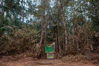 K'erenda Homet is een nieuw bos dat Victor Zambrano op eigen land heeft aangeplant. Dertig jaar geleden was dit kale grond, nu leven er jaguars en apen. Foto: Rochi León (voor De Correspondent)