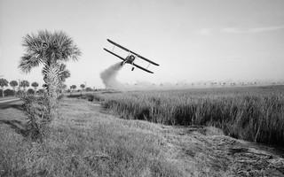 Een vliegtuig bespuit het land met een insecticide om eventuele malaria onder controle te houden, Georgië, 1973. Foto: Smith Collection / Gado / Getty Images
