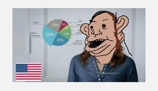 De meme Amerimutt is een bewerking van een advertentie voor een genetische test die je thuis kunt doen. Het gaat om een Amerikaanse vrouw wier genetisch materiaal uit veel verschillende werelddelen afkomstig lijkt. Volgens de maker is ze daarmee blijkbaar niet 'raszuiver'.