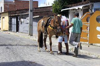 João de hoefsmid onderzoekt een paard in de favela Cidade de Deus ('Stad van God') bij Rio de Janeiro. Foto: Kurt Shaw
