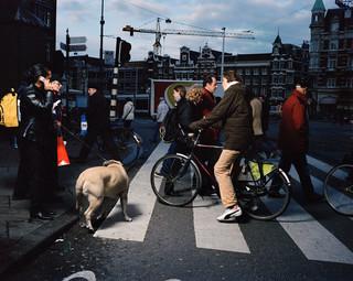 Amsterdam, Nederland. Uit de serie 'Crossing Europe' van Poike Stomps.