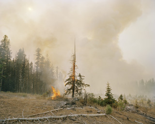 Onderzoek naar droogte en branden XIV: Umatilla Nationaal Bos, Washington State, 2006. Uit de serie 'A history of the future' van Susannah Sayler en Edward Morris.