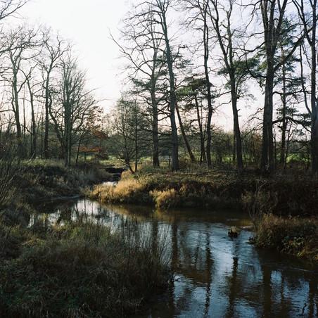De rivier de Dinkel in De Lutte, Overijssel. De Provincie Overijssel heeft € 85.000, - geïnvesteerd om het dinkeldal te ontstenen. Het valt binnen het Natura -2000 project waarin 24 natuur - gebieden worden ontwikkeld. Foto;s: Michael van Rhebergen (voor De Correspondent)