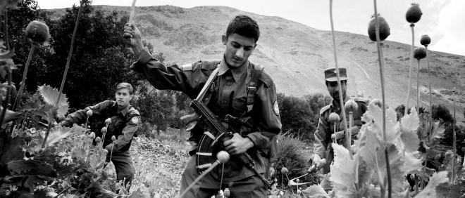 Afghaanse politie verwoest samen met Amerikaanse troepen een papaverveld in de Jurm-vallei. Foto is onderdeel van een documentaire-serie van Magnum-fotograaf Paolo Pellegrin over opiumhandel in Afghanistan. Foto: Paolo Pellegrin/Magnum Photos/HH