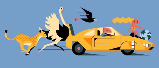 Illustratie: Maus Bullhorst (voor De Correspondent)