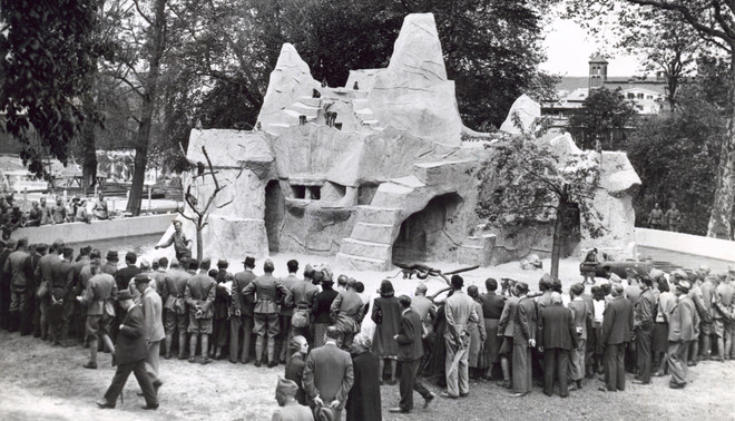 De apenrots in Artis in 1938. Foto: Spaarnestad Photo