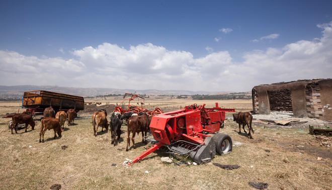 Het platgebrande melkveebedrijf van de Nederlandse Harry Teuben in Ginchi (Ethiopië). Op 13 december 2015 vernietigde een woeste menigte het bedrijf. Activisten waren boos dat ze moesten betalen om toegang te krijgen tot land dat eeuwenlang door hen werd gebruikt. Foto: Petterik Wiggers / HH