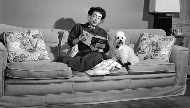 Amerikaanse actrice Joan Crawford (1904 - 1977) zit op de bank met een boek en haar poedel. Foto: Hulton Archive / Getty Images