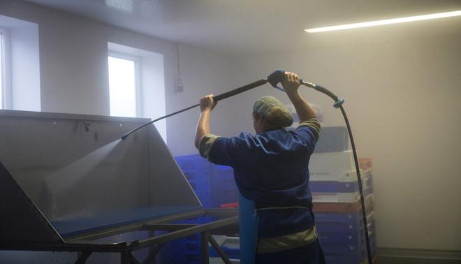 Reiniging van de bakken bij visverwerker Korf Vis, partner van de Ekofish Group in de verwerking en handel van verse schol. Foto: Karijn Kakebeeke (voor De Correspondent)