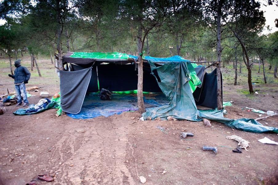 Gambianen in het bos bij Oujda. Hun tenten worden systematisch door de Marokkaanse politie kapot gemaakt. Foto: Piet den Blanken/Hollandse Hoogte