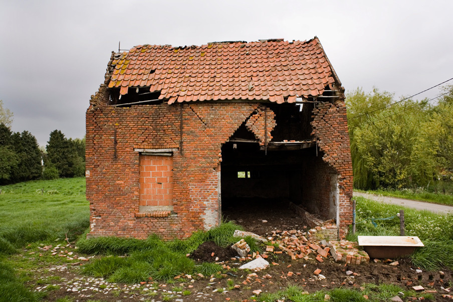 In het natuurgebied in België dat grenst aan de Hedwigepolder in Nederland. Foto: Rob Huibers