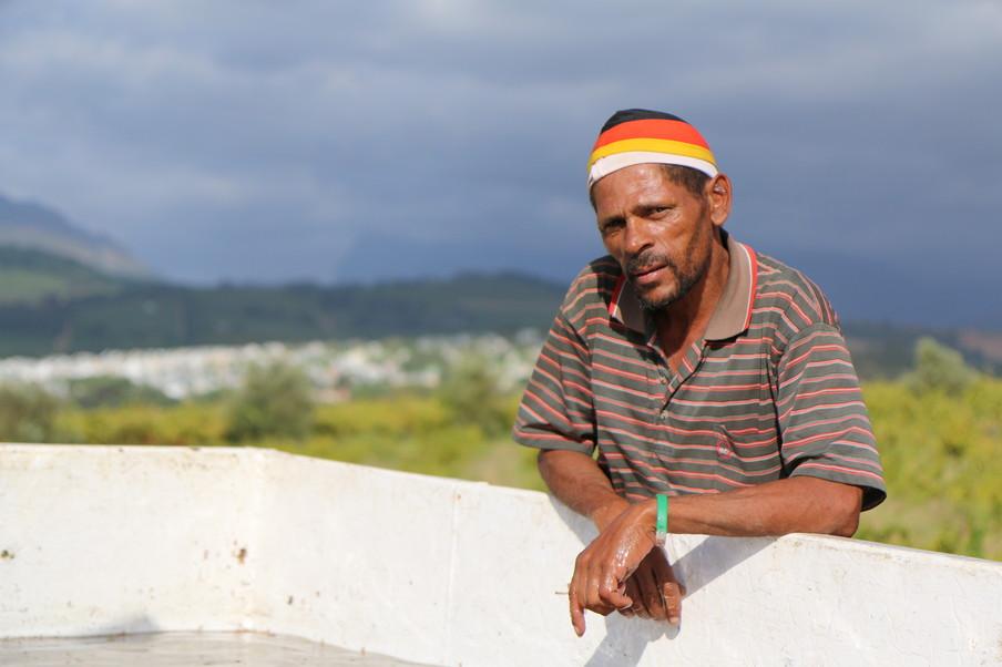 'Het is een scala aan werklieden dat op de boerderij werkt, sinds Zuid-Afrika na de apartheid zijn landsgrenzen opende.' Beeld: Emma Lesuis
