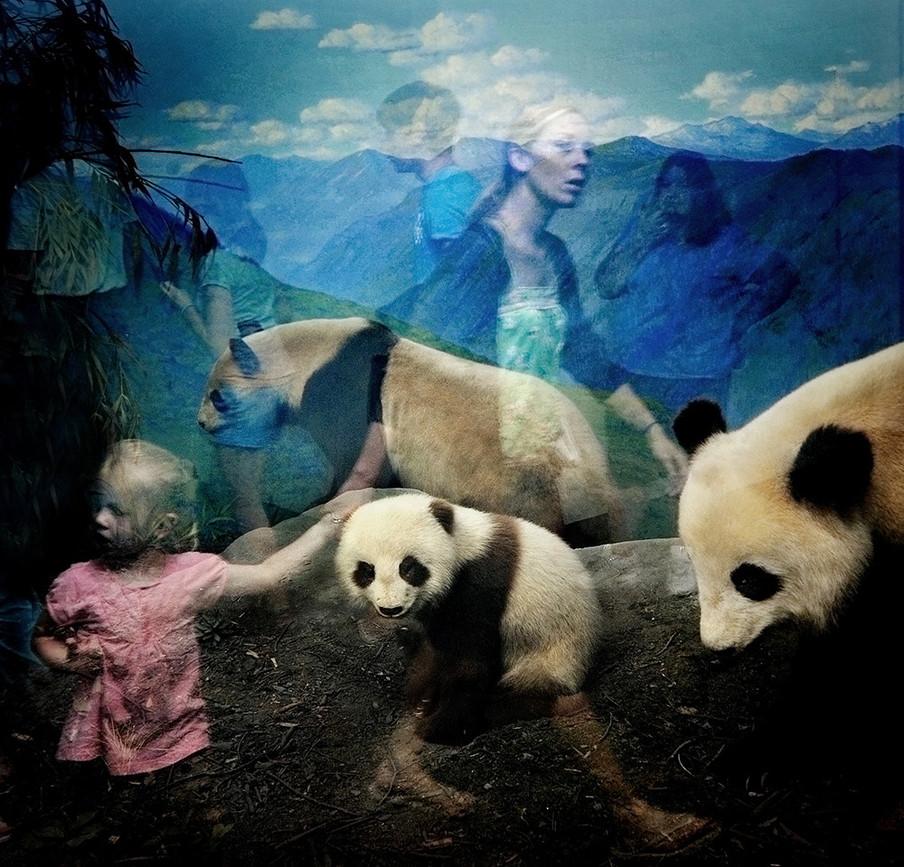 Foto uit de serie 'Natural History' gemaakt door Traer Scott.