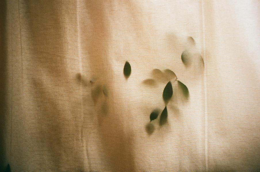 Uit de serie Enclose. Foto: Prins de Vos